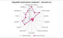 Dégustation Syrah primeur thermovinifié Languedoc - mise précoce
