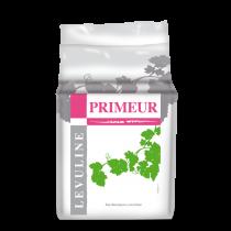 """Levedura natural selecionada para elaboração de vinhos frutados """"primeurs ou nouveaux"""""""